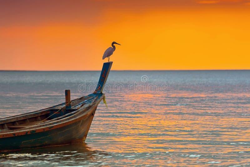 Por do sol sobre o mar imagem de stock royalty free