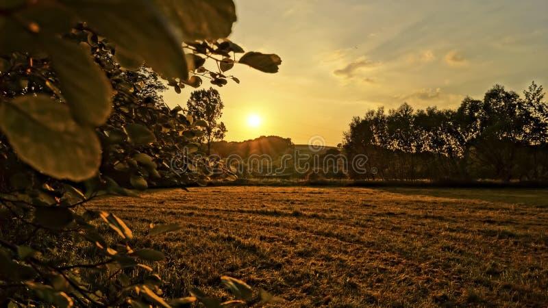 Por do sol sobre um campo fotos de stock