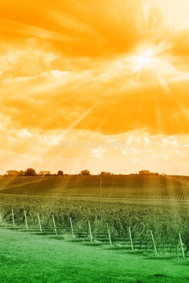 Por do sol surpreendente fotos de stock royalty free