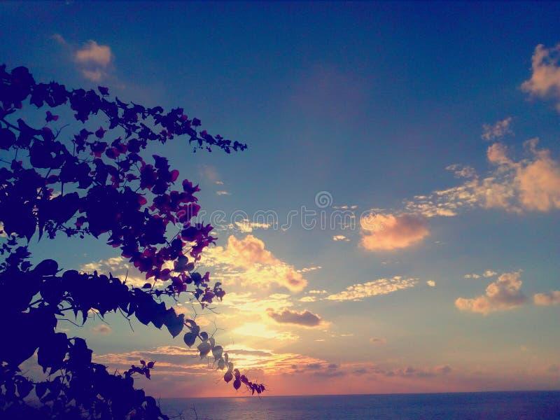 Por do sol surpreendente azul fotos de stock