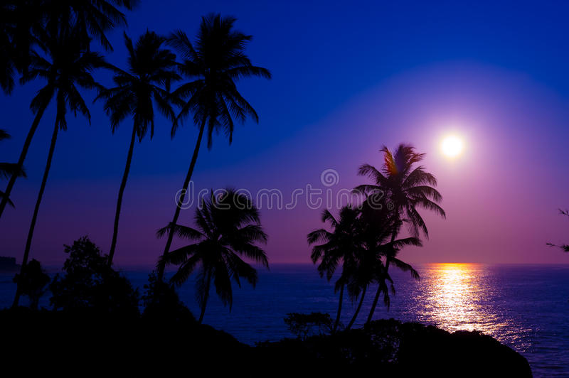 Por do sol tropical bonito foto de stock royalty free