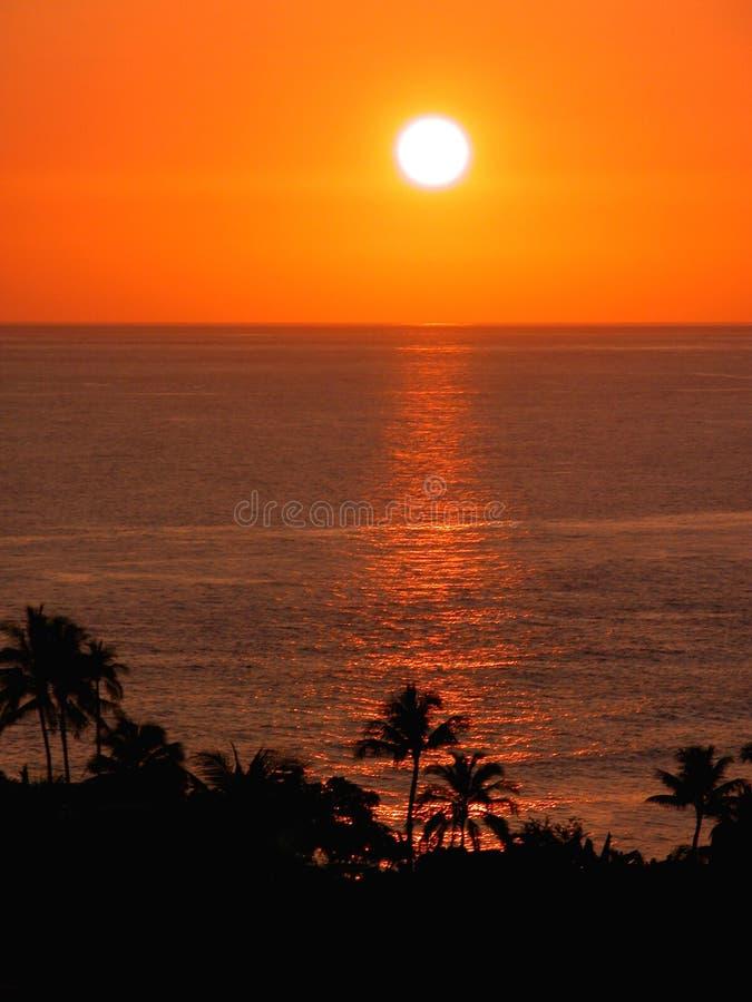Por do sol tropical (céus alaranjados) imagem de stock royalty free