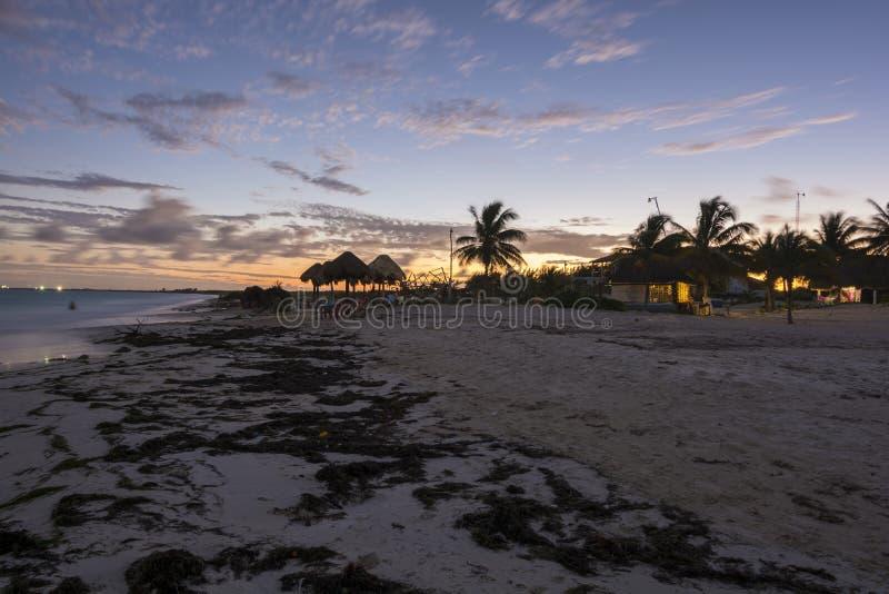 Por do sol tropical da praia imagem de stock royalty free