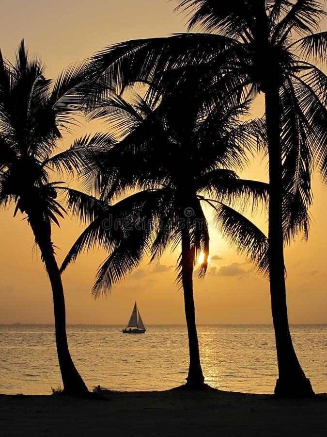 Por do sol tropical em Cayman Islands fotos de stock royalty free