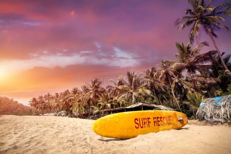 Por do sol tropical na praia de Goa fotos de stock