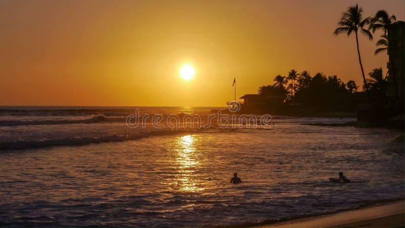 Por do sol tropico fotos de stock royalty free