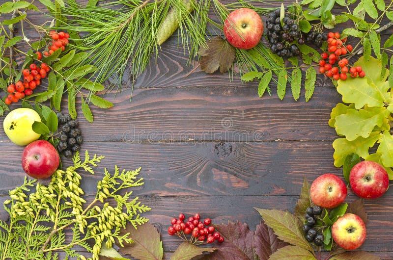 Por encima horizontal de manzanas frescas y de la producción cruda de las bayas en fondo rústico de madera Endecha plana fotos de archivo