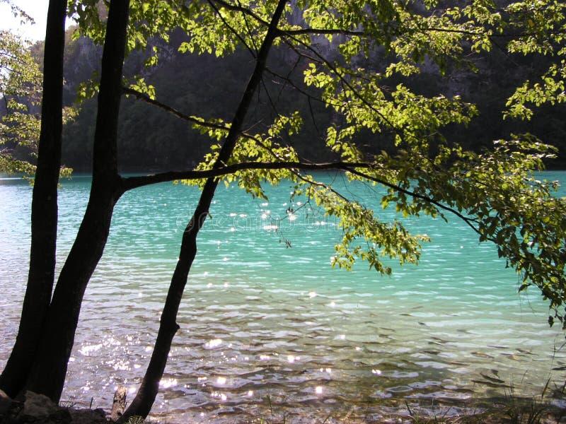 Por Las Piscinas (Croatia) Imágenes de archivo libres de regalías