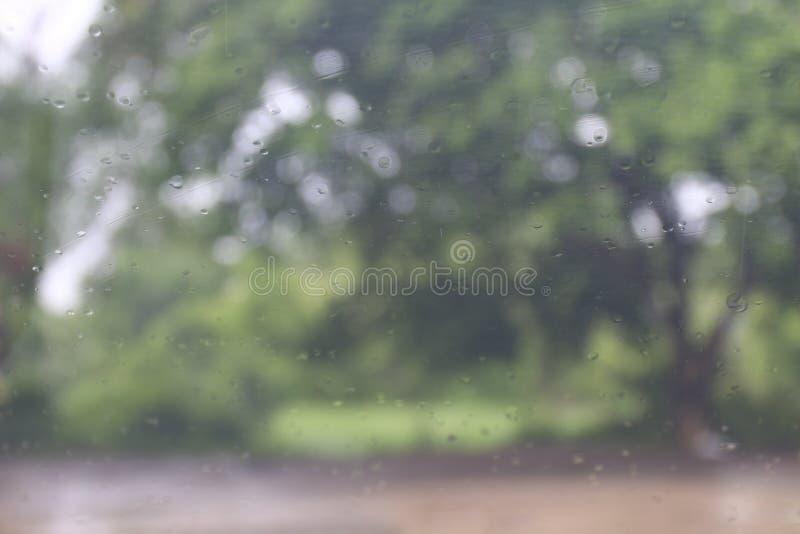 Pora deszczowa, pluśnięcie Podeszczowych kropelek Naturalna woda Opuszcza na Szklanym okno w pory deszczowa drzewnym tle, deszcz  fotografia royalty free