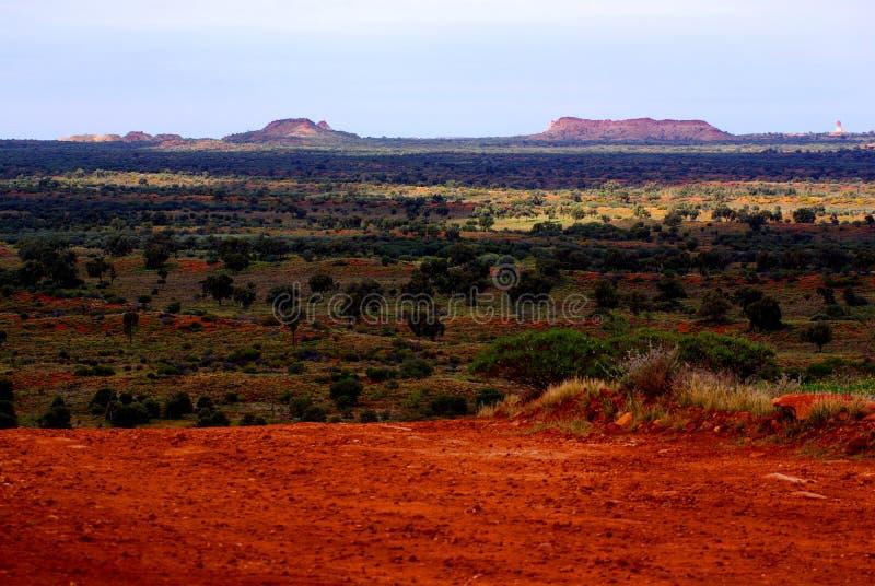 pora deszczowa pustynny simpson zdjęcia royalty free
