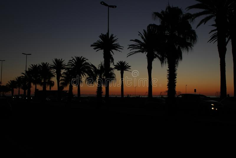 Pora robi zolu Praia - południowy Africa obraz stock