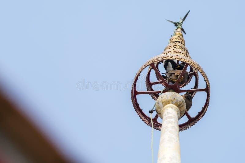 Porada świątynia w Tajlandia fotografia royalty free