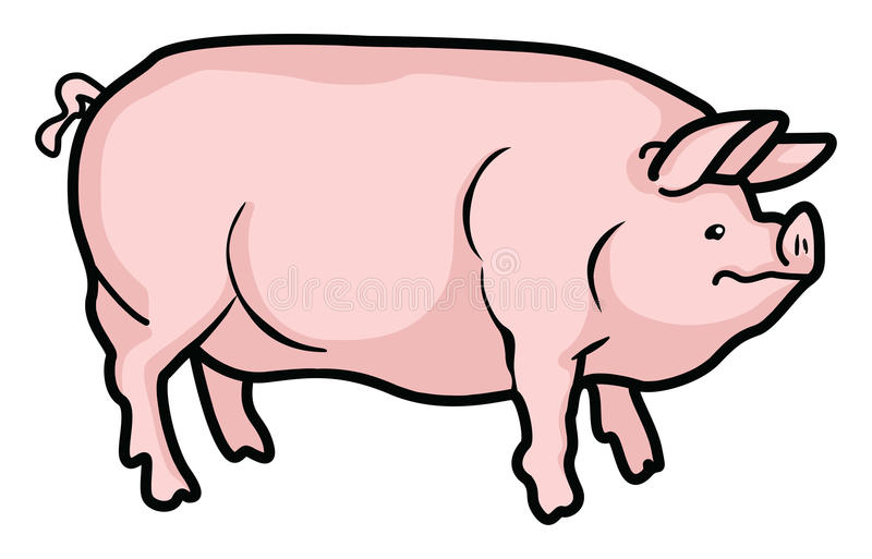 Porc illustration de vecteur