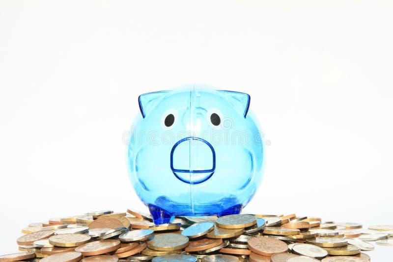 Porc d'économie se tenant sur un bon nombre d'argent photographie stock