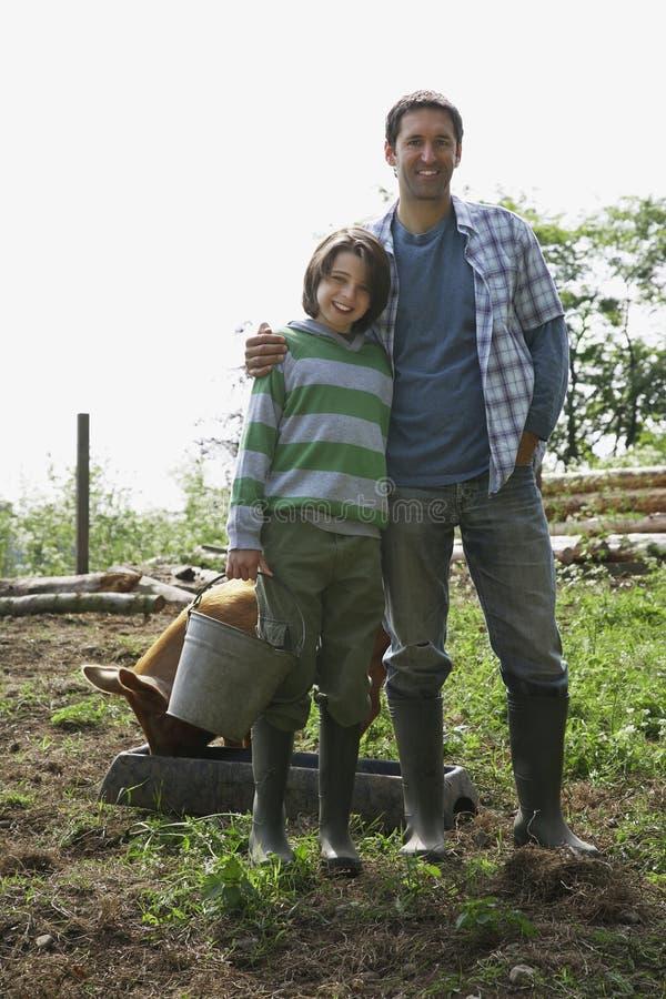 Porc d'And Son With de père dans l'étable image libre de droits