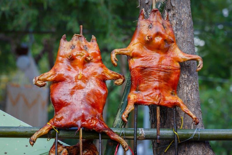 Porc de nourrisson grillé tout entier images stock