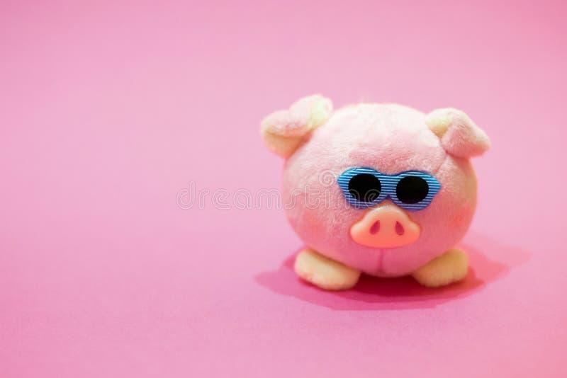 Porc futé de rose de jouet de peluche avec des verres de soleil sur le fond rose Copiez l'espace Concept de nouvel 2019 ans chino images libres de droits