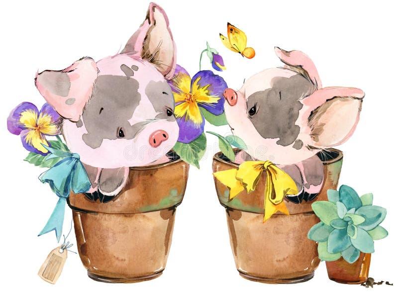 Porc mignon illustration d'animal d'aquarelle de bande dessinée illustration de vecteur