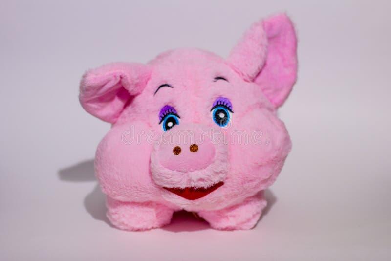 Porc rose de nounours photographie stock libre de droits