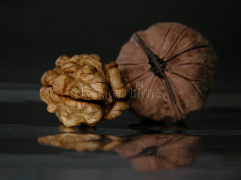 Download Porca imagem de stock. Imagem de crosta, verde, porcas, vegetal - 52411