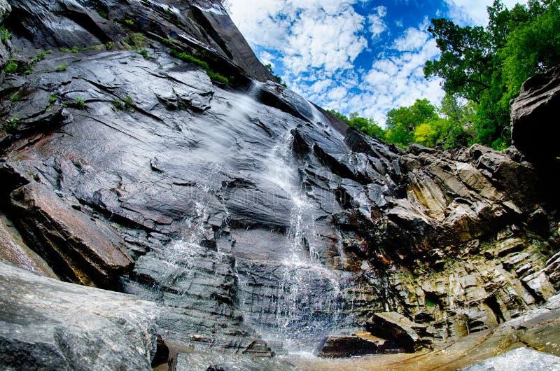 A porca de hicória cai no parque estadual Carolina Unit norte da rocha da chaminé imagens de stock royalty free