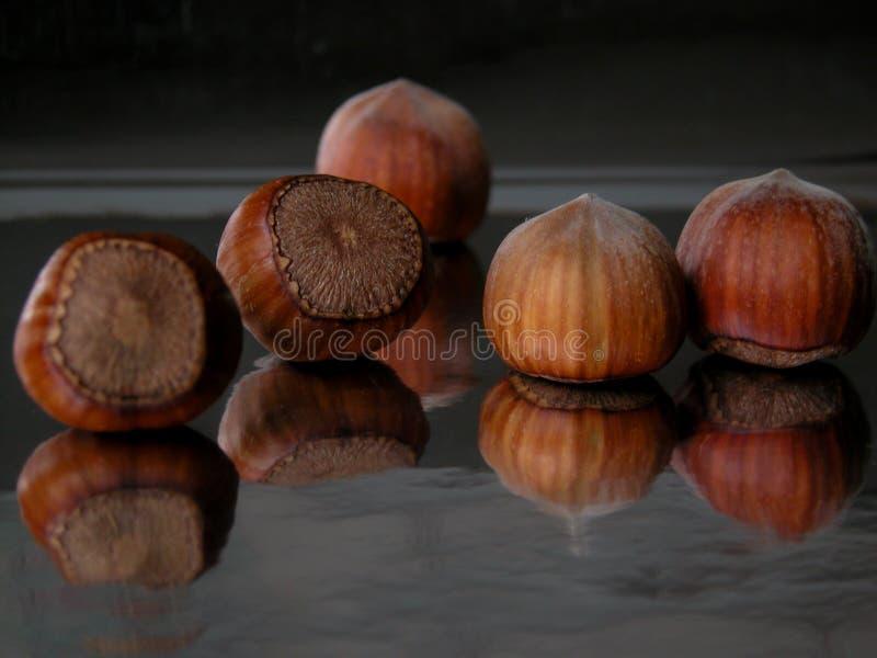 Download Porcas foto de stock. Imagem de porca, herb, crosta, potenciômetro - 52410