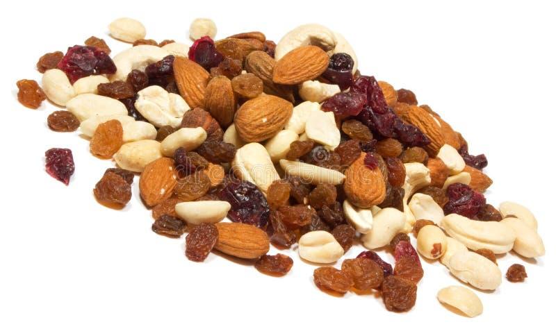 Porcas com raisins imagem de stock royalty free