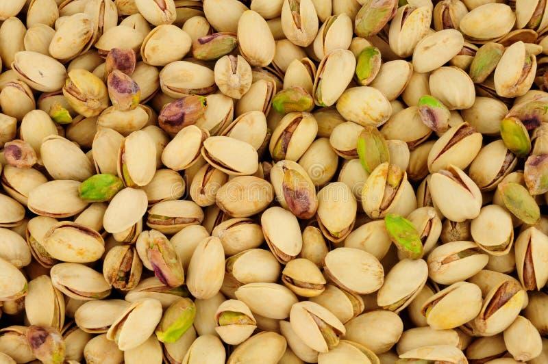 Porcas de pistachio Roasted fotografia de stock