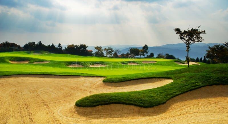 porcelana golf obrazy royalty free
