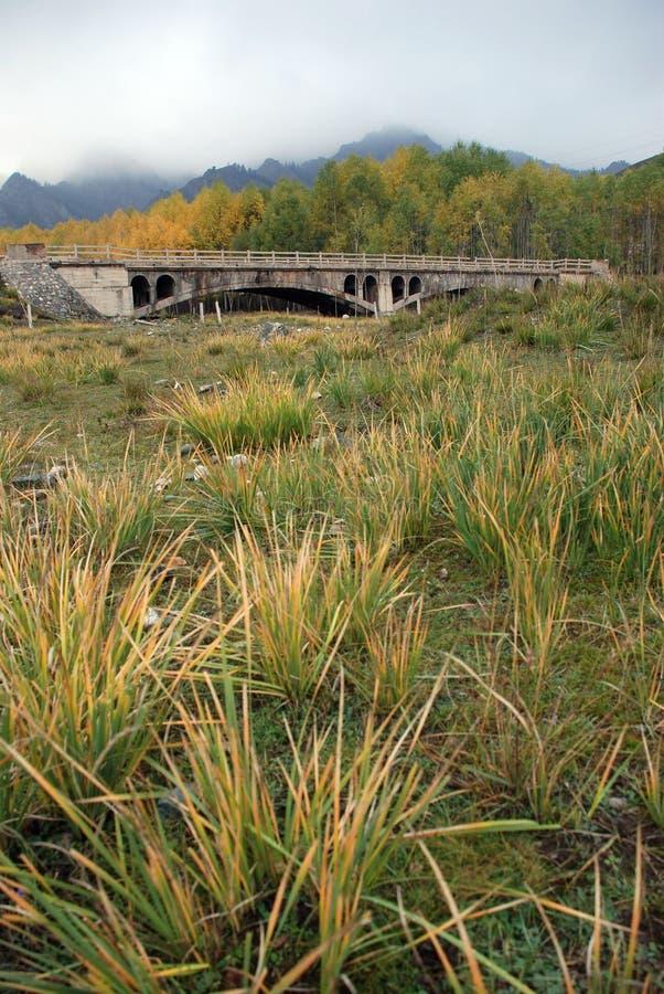 Porcelanowy północny zachód Qilian góry most obrazy royalty free