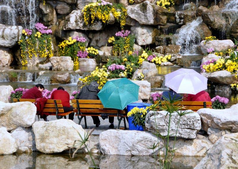 porcelany parkowe qingbaijiang kobiety zdjęcia stock