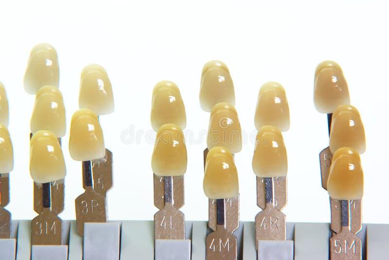 Porcellana delle protesi dentarie - guida di colore fotografia stock libera da diritti