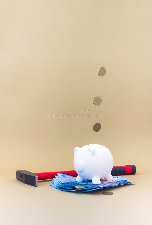 Porcellino salvadanaio con soldi e le monete fotografia stock libera da diritti
