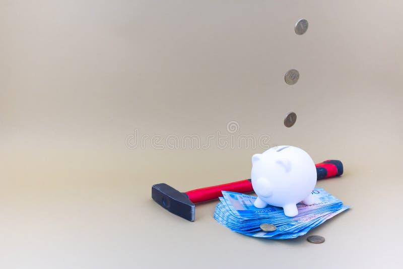 Porcellino salvadanaio con soldi e le monete fotografia stock
