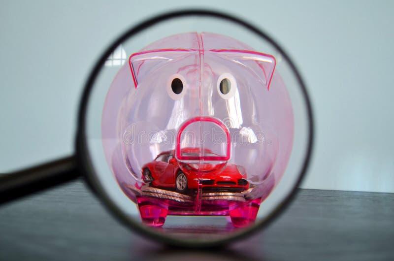 Porcellino salvadanaio dietro una lente d'ingrandimento immagini stock libere da diritti