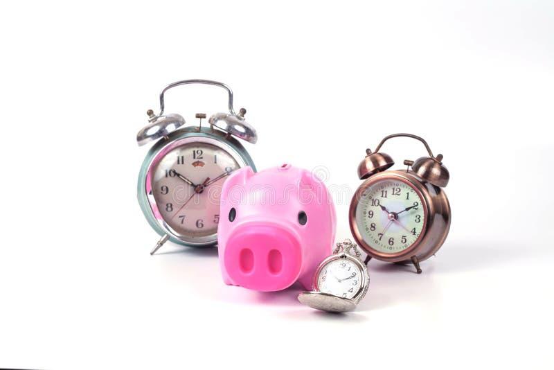 porcellino salvadanaio ed orologio nel tempo di risparmi fotografia stock
