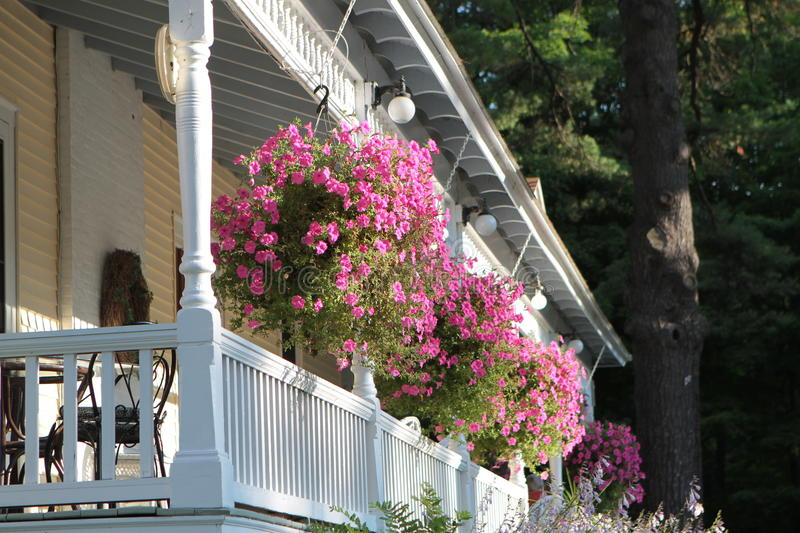 Porch with Flowers. Sprawling pink flowers hanging from the front of an old fashioned white-railed porch. Side view from outside the porch. Wooded backdrop royalty free stock photography