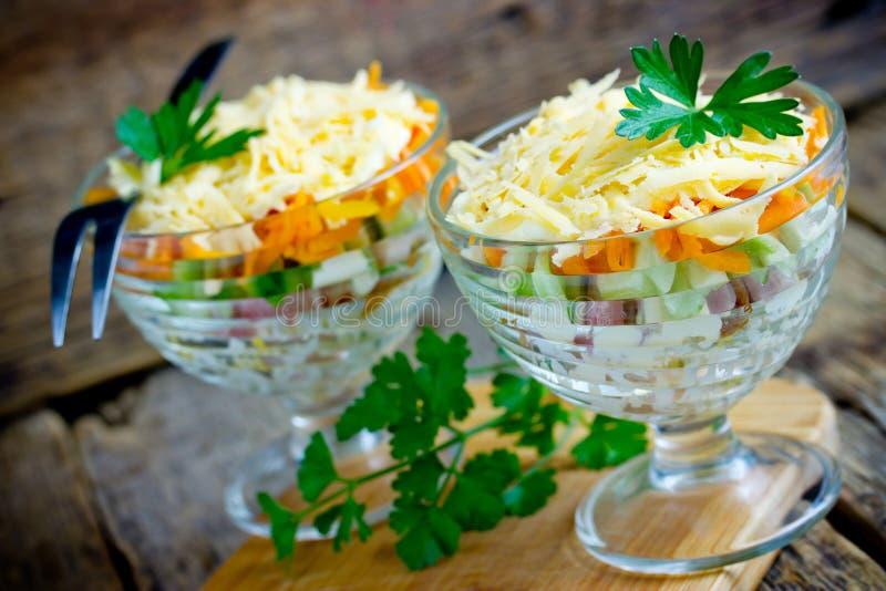 Porción acodada festiva de la ensalada en vidrio del pollo ahumado, del huevo, del pepino, de la zanahoria, de la patata y del qu imagen de archivo libre de regalías