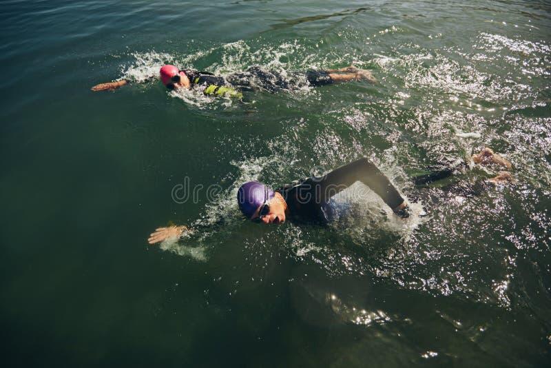 Porción de la nadada de competencia del triathlon imágenes de archivo libres de regalías
