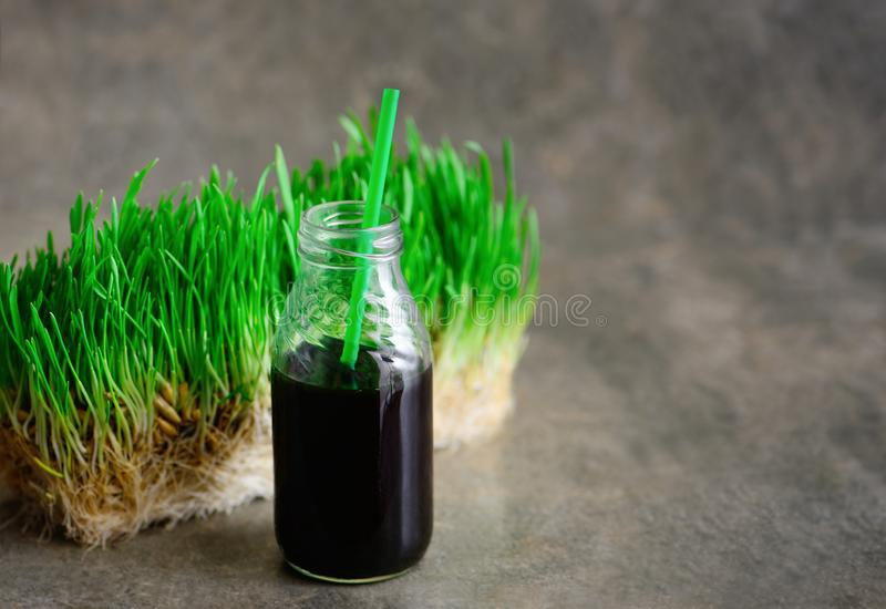 Porción recientemente squized de los wheatgrass en una botella con una paja foto de archivo