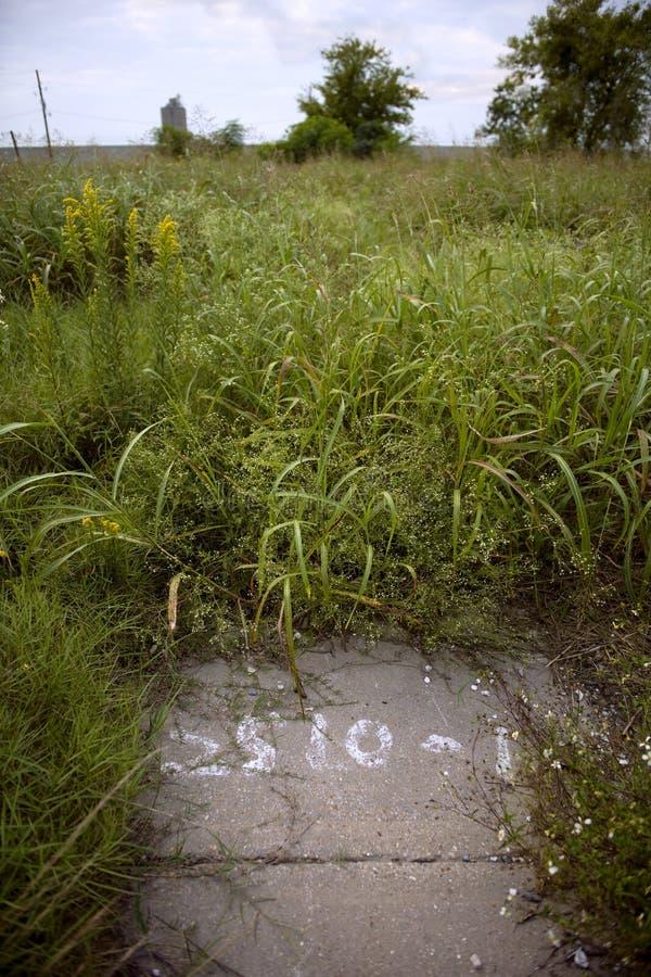 Porción vacía Overgrown después del huracán Katrina imagen de archivo libre de regalías