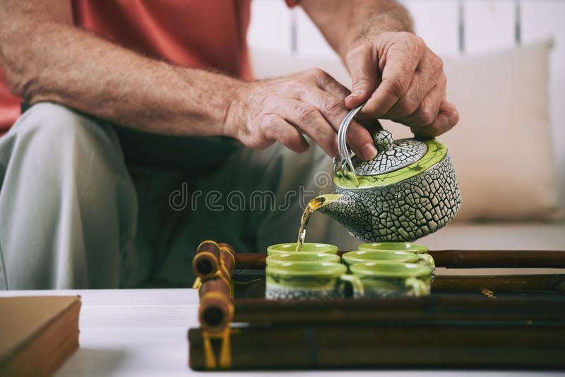 Porci herbata obraz stock