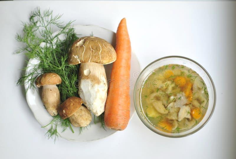 Porcini, Boleet, Soep met porcini en groenten stock afbeeldingen