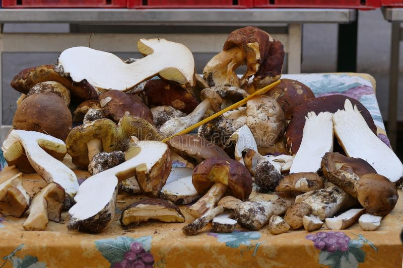 Porcini mushrooms. Sectioned in the market of Tuscany, Italy stock photo