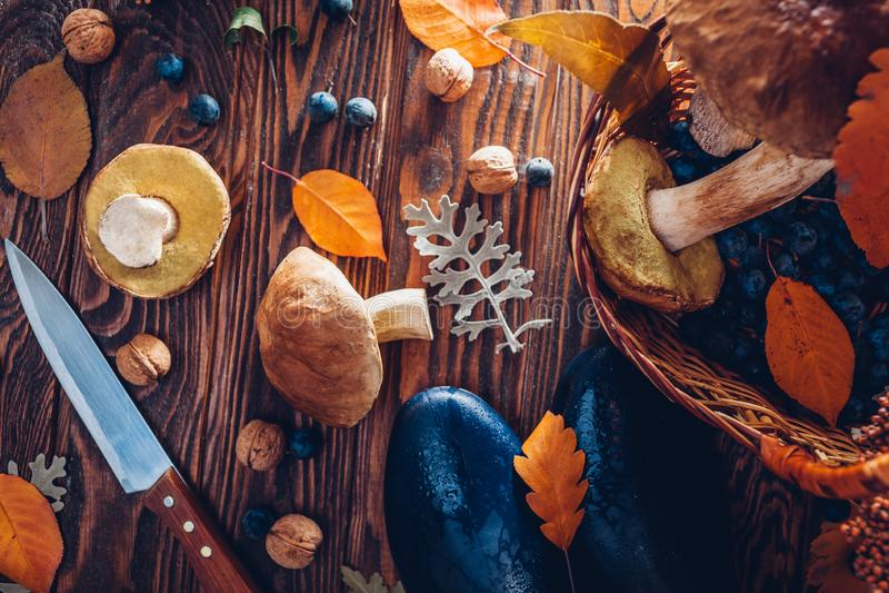 Porcini prolifera rápidamente en cesta con las bayas y las nueces en la tabla de madera Cosecha del otoño con los zapatos Cosecha imagen de archivo