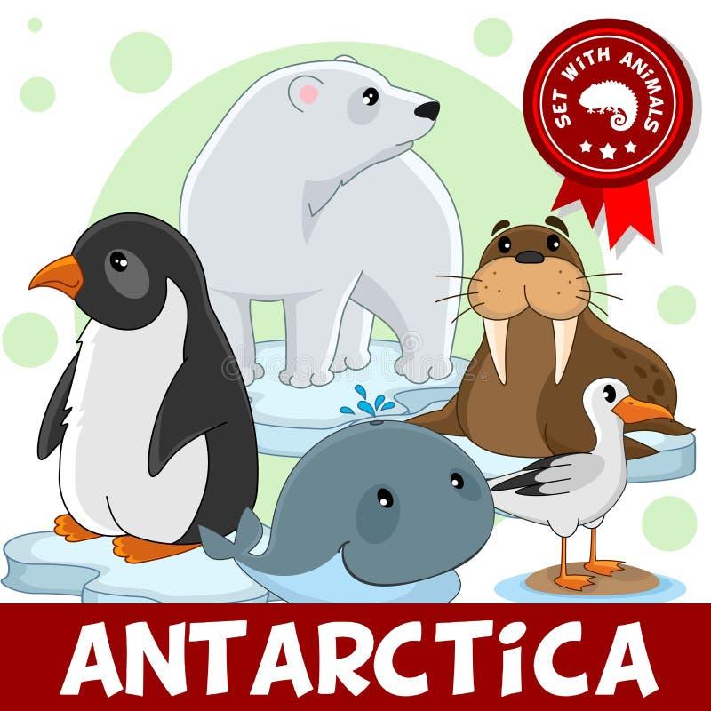 3 porciones Animales de la Antártida ilustración del vector