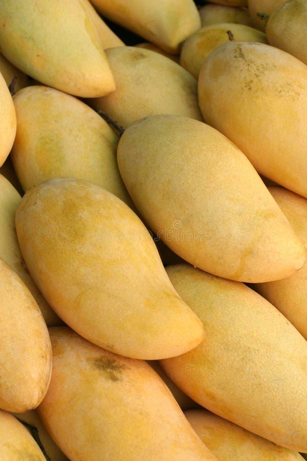 Porciones de mangos imagenes de archivo