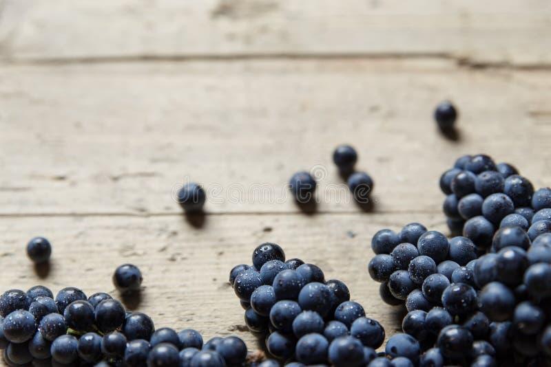 Porciones de uvas de vino azules en una tabla de madera vieja, copyspace foto de archivo libre de regalías