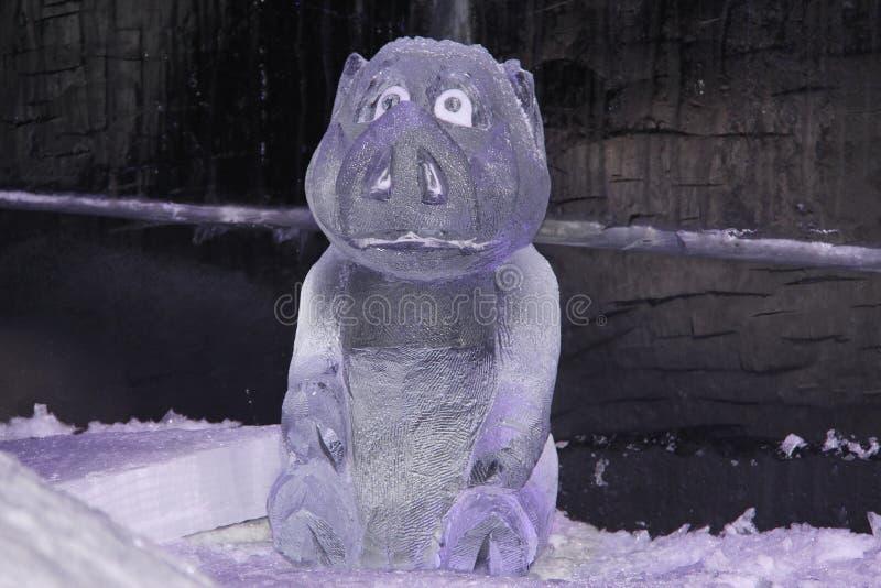 Porco animal do gelo que senta-se na neve imagem de stock