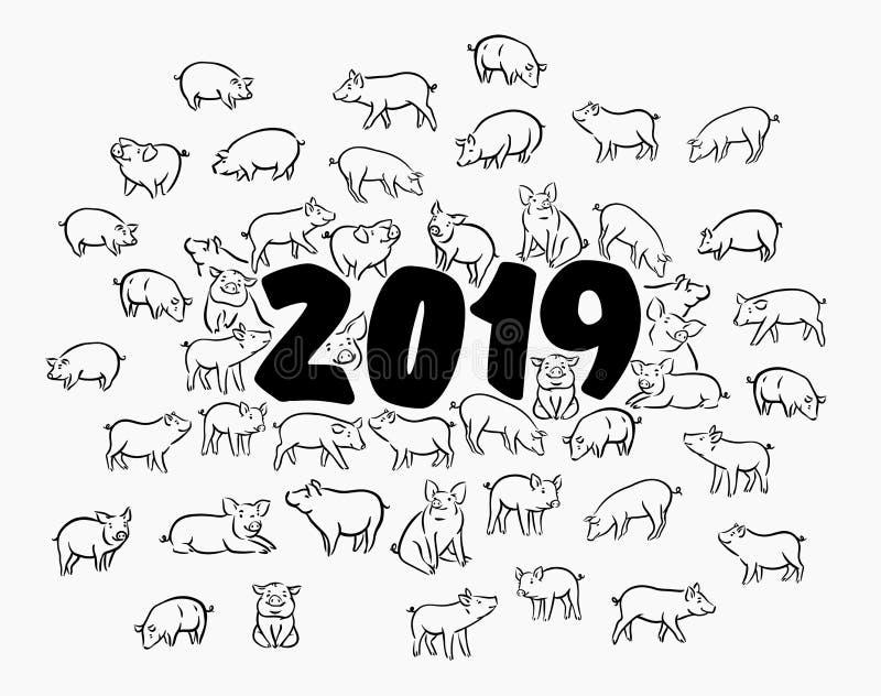 Porco engraçado bonito Ano novo feliz Símbolo chinês dos 2019 anos Vale-oferta festivo excelente Ilustração do vetor ilustração stock